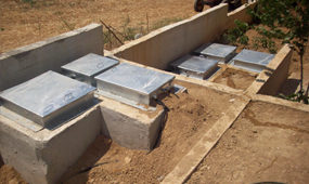 Biological Reinforced Concrete Treatment